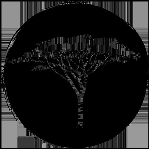 Bushstory Logo